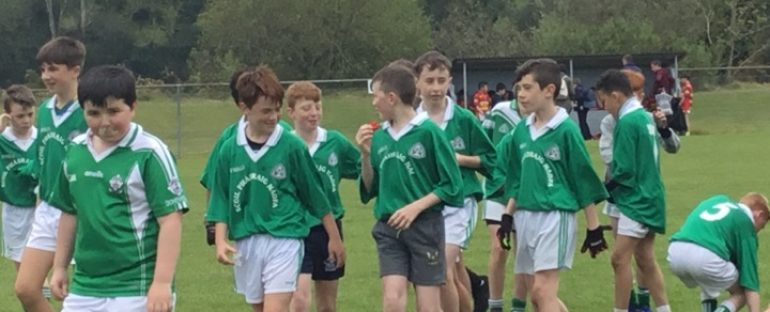 Sciath na Scol Playoff